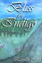 Bliss for Indigo - A Short Story ebook by Quinlin Caid
