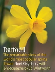Daffodil - The remarkable story of the world's most popular spring Flower ebook by Noel Kingsbury,Jo Whitworth