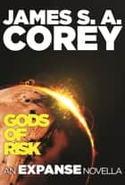 Gods of Risk ebook by James S. A. Corey