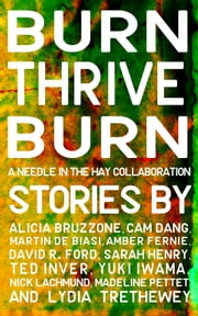 Burn, Thrive, Burn ebook by Needle In The Hay, Alicia Bruzzone, Cam Dang,...