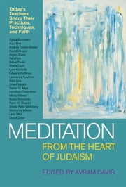 Meditation from the Heart of Judaism - Today's Teachers Share Their Practices, Techniques, and Faith ebook by Shohama Wiener, Avram Davis, Rabbi Shefa Gold,...