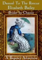 Damsel to the Rescue - Brides by Chance, #6 ebook by Elizabeth Bailey