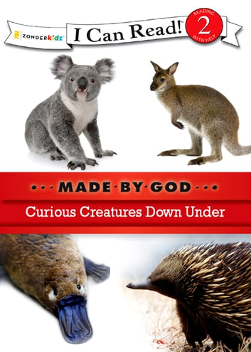 Curious Creatures Down Under ebook by Zondervan