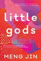 Little Gods - A Novel ebook by Meng Jin