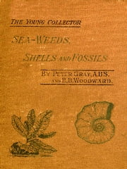 Sea-Weeds, Shells and Fossils [Illustrated] ebook by Peter Gray,B. B. Woodward