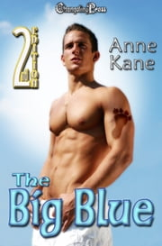 2nd Edition: The Big Blue ebook by Anne Kane
