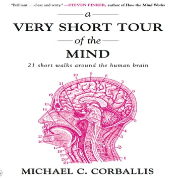 A Very Short Tour the Mind - 21 Short Walks Around the Human Brain audiobook by Michael Corballis
