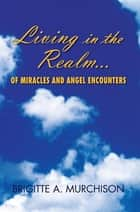 Living in the Realm of Miracles and Angel Encounters ebook by Brigitte A. Murchison