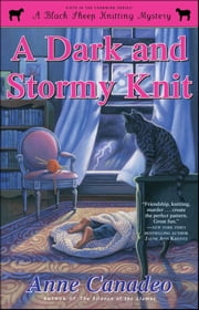 A Dark and Stormy Knit ebook by Anne Canadeo