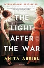 The Light After the War - A Novel ebook by Anita Abriel