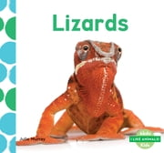Lizards ebook by Julie Murray