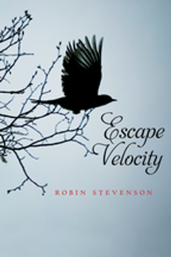 Escape Velocity ebook by Robin Stevenson