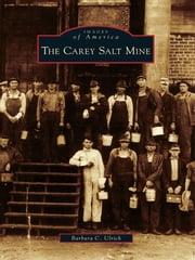 The Carey Salt Mine ebook by Barbara C. Ulrich