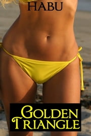 Golden Triangle ebook by Habu