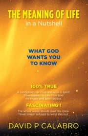 The Meaning Of Life in a Nutshell: What God Wants You To Know ebook by Calabro, David P