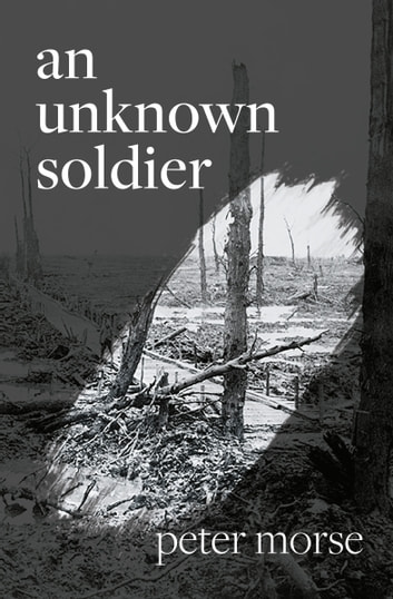 an unknown soldier ebook by Peter Morse
