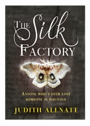 The Silk Factory ebook by Judith Allnatt
