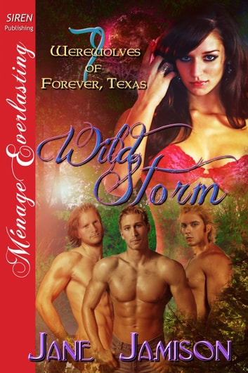 Wild Storm ebook by Jane Jamison