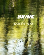 BRINK - Don't Go Back to Sleep ebook by Z Newell