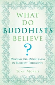What Do Buddhists Believe? - Meaning and Mindfulness in Buddhist Philosophy ebook by Tony Morris