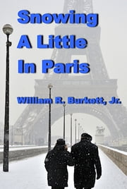 Snowing A Little in Paris And Other Cold War Stories ebook by William R. Burkett, Jr.
