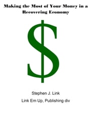 Making the Most of Your Money in a Recovering Economy ebook by Stephen Link