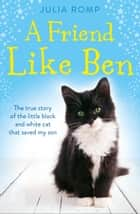 A Friend Like Ben: The true story of the little black and white cat that saved my son ebook by Julia Romp