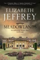 Meadowlands - A World War I family saga ebook by Elizabeth Jeffrey