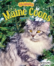 Maine Coons: Super Big ebook by White, Nancy