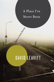 A Place I've Never Been - Stories ebook by David Leavitt