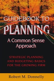 GUIDE BOOK TO PLANNING - A COMMON SENSE APPROACH - Strategic Planning and Budgeting Basics for the Growing Firm ebook by Robert M. Donnelly