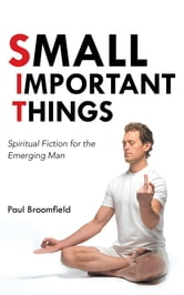 Small Important Things - Spiritual Fiction for the Emerging Man ebook by Paul Broomfield