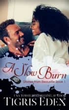 A Slow Burn ebook by