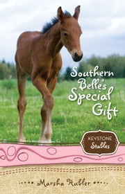 Southern Belle's Special Gift ebook by Marsha Hubler