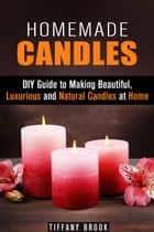 Homemade Candles: DIY Guide to Making Beautiful, Luxurious and Natural Candles at Home - DIY Projects ebook by Tiffany Brook