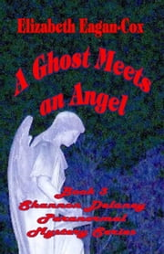 A Ghost Meets an Angel: Shannon Delaney Paranormal Mystery Series, Vol. 3 ebook by Elizabeth Eagan-Cox