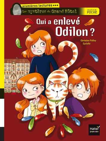 Qui a enlevé Odilon ? ebook by Christine Palluy