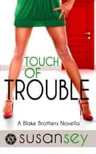 Touch of Trouble - The Blake Brothers Trilogy, Book 2.5 ebook by Susan Sey