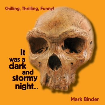 It was a dark and stormy night audiobook by Mark Binder