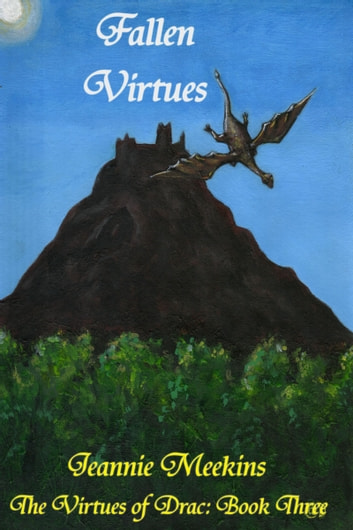 Fallen Virtues ebook by Jeannie Meekins