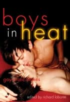 Boys In Heat - Gay Erotic Stories ebook by Richard Labonté