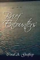 Brief Encounters ebook by Coral A. Godfrey