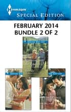 Harlequin Special Edition February 2014 - Bundle 2 of 2 - A Sweetheart for Jude Fortune\Reuniting with the Rancher\The Doctor's Former Fiancee ebook by Cindy Kirk, Rachel Lee, Caro Carson