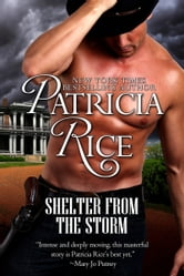 Shelter From the Storm ebook by Patricia Rice