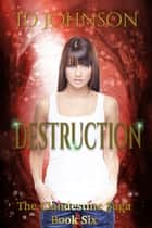 Destruction ebook by