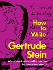 How to Write ebook by Gertrude Stein