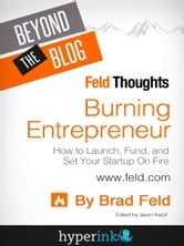 Beyond The Blog: Brad Feld's Burning Entrepreneur - How to Launch, Fund, and Set Your Start-Up On Fire! ebook by Brad Feld
