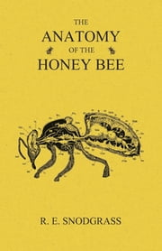 The Anatomy of the Honey Bee ebook by R. E. Snodgrass