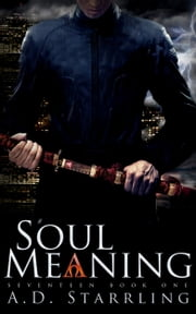 Soul Meaning - A Seventeen Series Novel: Book 1 ebook by AD Starrling