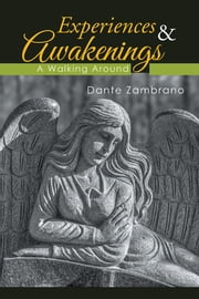 Experiences & Awakenings - A Walking Around ebook by Dante Zambrano
